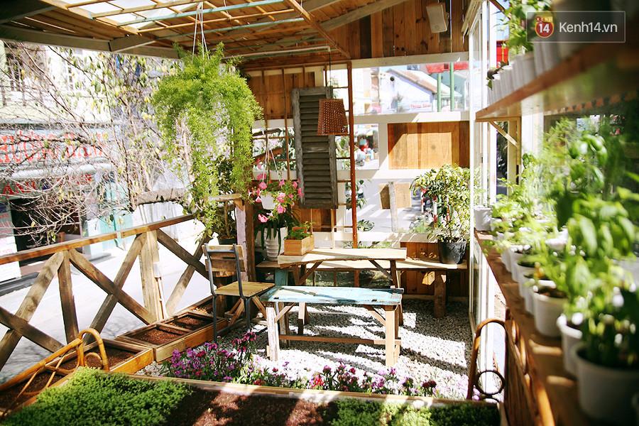 Khu vực trong nhà kiếng này chủ yếu để trồng rau nên chỉ có 2 bộ bàn ghế được đặt tại đây.
