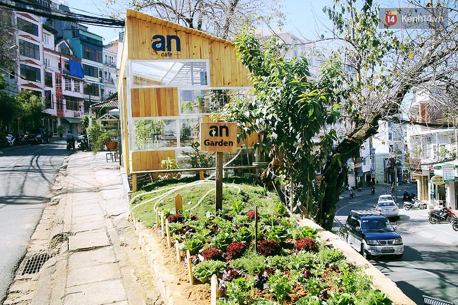 Phía trước quán là một vườn rau cải sạch được trồng để phục vụ khách.